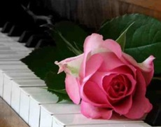 piano_keys_and_rose_small